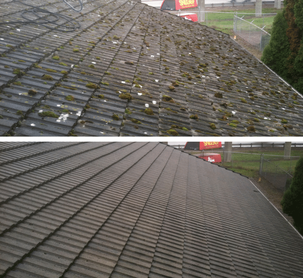 Tile Roof Cleaning